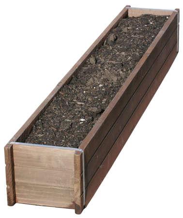 Planter Geïsoleerd Stockfoto