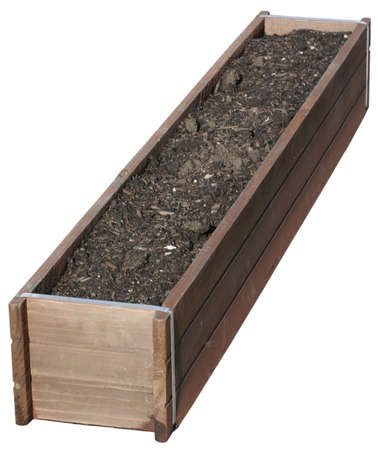 Planter Isolated
