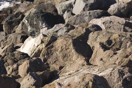 edges: Gray Rocks