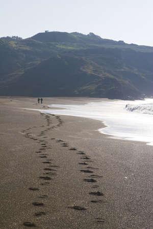 footprint: Trail
