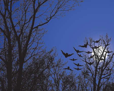 Nacht Bomen