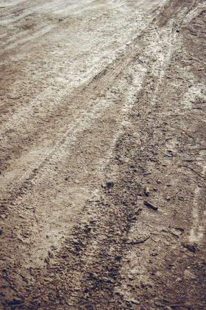 Tire tracks on a muddy road