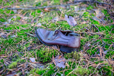 Old lost single shoe in the pine forest.