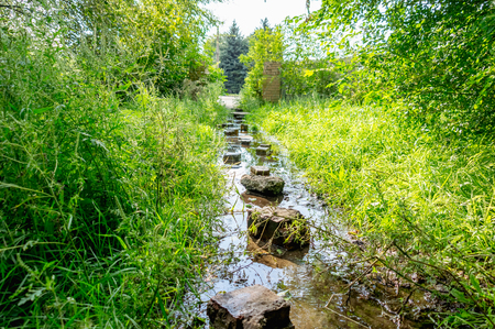 Flooded path in the summer. The concept of daily obstacles. Overcoming a difficult path to achieve the intended goal. Difficulties on the way to success. Reklamní fotografie