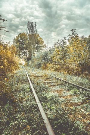 Old overgrown railway in autumn.