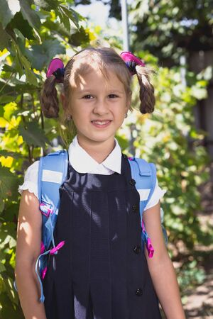 Little girl with backpack in the vineyard in the summer. Stock Photo