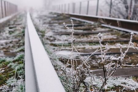 Rails in hoarfrost. Misty autumn morning