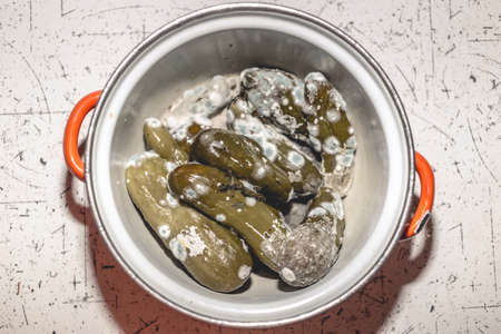 Rotten, spoiled green cucumbers covered with mold and mucus in a pan