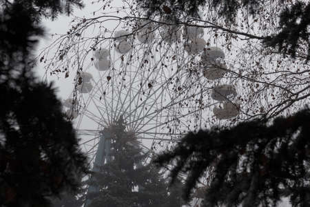 Ferris wheel in an old abandoned park in the autumn in thick fog.