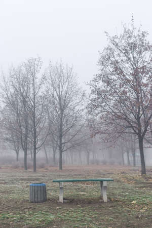 A bench in the park on a foggy autumn morning. Standard-Bild