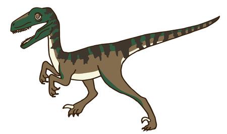 raptor: Cute Velociraptor or Raptor Dinosaur Stalking his Prey, or maybe Running, Walking, or Standing.