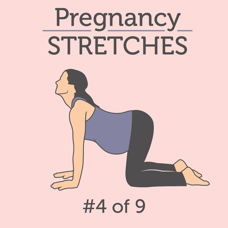 Pregnant Woman in the Expecting Stages of Birth Stretching or Exercising with Breathing, Exercise and Yoga Methods.  Stretches and Light Weight Aerobics or Exercise Methods Help You Have Strong and Nice Baby.  イラスト・ベクター素材