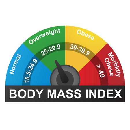 BMI lub Indeks Infograficzny Indeksu Masowego Ciała Ilustracje wektorowe
