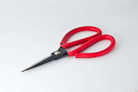 Pair of Scissors  photo