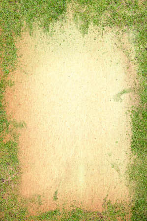 Old paper texture covered green grass Stock Photo - 8831224