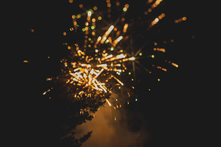silhouetted: Fireworks in night sky with evergreen trees silhouetted in foreground. Stock Photo