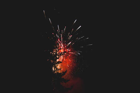 foreground: Fireworks in night sky with evergreen trees silhouetted in foreground. Stock Photo