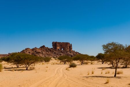 Natural rock formation and desert vegetation - dry grass and low trees, Sahara desert, Chad, Africa