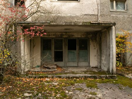 Abandoned residential area and building. Previous roads and alleys are taken by trees and bushes. Ghost town of Pripyat, Chernobyl Exclusion Zone. Ukraine.