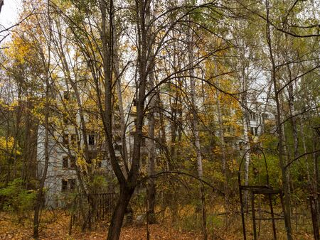 Abandoned residential building. Previous roads and alleys are taken by trees and bushes. Ghost town of Pripyat, Chernobyl Exclusion Zone. Ukraine. Stock Photo