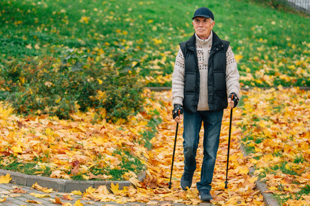 Senior man  with nordic walking poles in colorful autumn park. Healthy life concept. Old sportsman doing exercise outdoors. 免版税图像