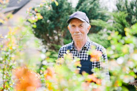 Senior gardener standing in garden. Aged man in overall and baseball cap. Portrait of old farmer
