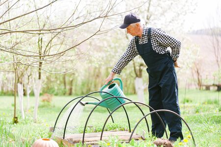 Senior gardener working with watering the garden. Old man in cap and overall. Aged worker. Foto de archivo