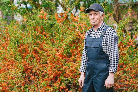 Senior gardener standing in garden. Aged man in overall and baseball cap. Portrait of old farmer