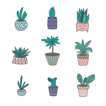 home gardening: Vector Flat Illustration of Different Flowers in Pots.