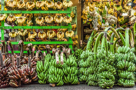 Just Bananas. A store selling only bananas. Various kind of bananas nicely arranged and displayed at the store front - raw and ripened, red, green, and yellow. Small bunches hang on wooden bar, big bunches stay on the floor.