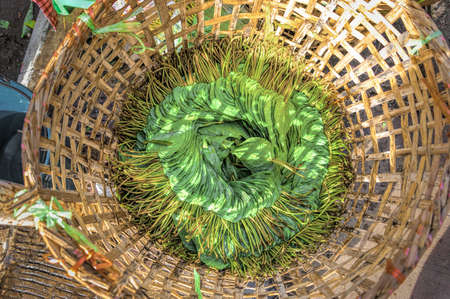 Betel Leaves in a rattan basket. This is a part of 'Betel Nut Chewing' ingredient which consists of areca nut, slaked lime paste, and betel leaf. In Myanmar, it is common chewing culture believed to promote good health.