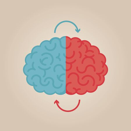 to the right: Left & right human brain illustration