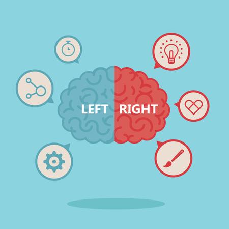 Left & right human brain illustration Vetores