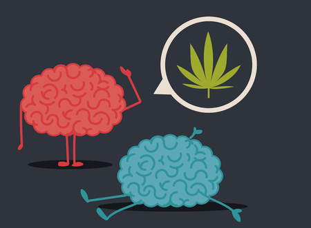 conclusions: Dead brain by marihuana abuse: murder investigation conclusions