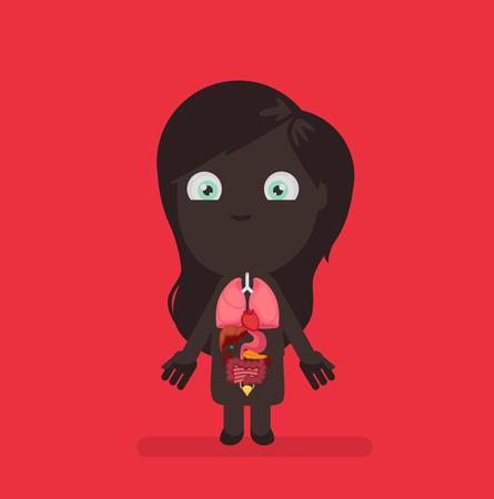 large intestine: Human body anatomy vector illustration