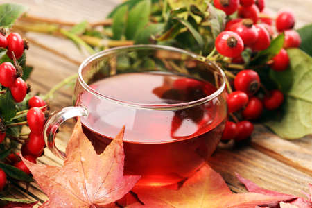 Tea. cup of herbal Dog rose tea with bunch branch Rosehips, types Rosa canina hips. Medicinal plants and herbs composition