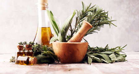 Fresh herbs from the garden and the different types of oils for massage and aromatherapy. Wellness concept Imagens