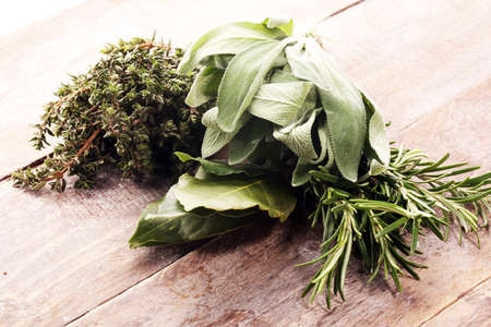 Homegrown and aromatic herbs on rustic background.Set of culinary herbs. Green growing sage, oregano, thyme, basil, mint and oregano. Standard-Bild
