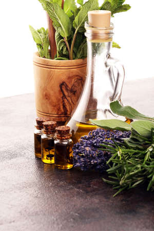 Fresh herbs from the garden and the different types of oils for massage and aromatherapy on table. Set of culinary herbs. Green growing sage, oregano, thyme, basil, mint and oregano.