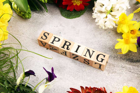 Spring flat lay wooden letter. Set Of Tools For Gardener And Flowerpots with beautiful spring flowers