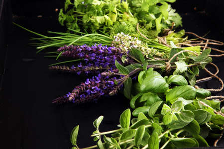 Various Fresh herbs lay on a rustic background. Basil, sage, thyme, oregano, dill, chives, parsley and coriander. Zdjęcie Seryjne