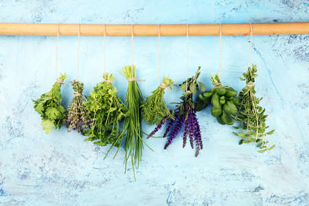 Various Fresh herbs hanging in front of a rustic background. Basil, sage, thyme, oregano, dill, chives, parsley and coriander. Zdjęcie Seryjne