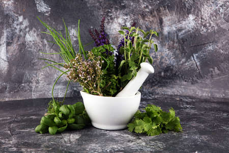 Various Fresh herbs lay on a rustic background with mortar and pestle. Basil, sage, thyme, oregano, dill, chives, parsley and coriander.