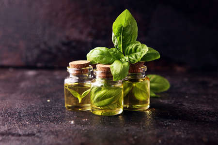 A transparent glass bottle of basil essential oil with fresh basil leaves on background