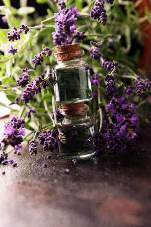 Glass bottle of Lavender essential oil with fresh lavender flowers for healthy aromatherapy spa massage concept.