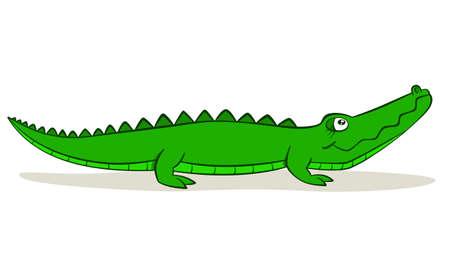 Cute cartoon alligator on isolated white background, vector illustration Vector