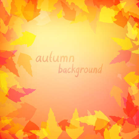 warm colors: Autumn background with leaves in warm colors