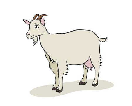 Cute goat cartoon. Vector illustration Vector