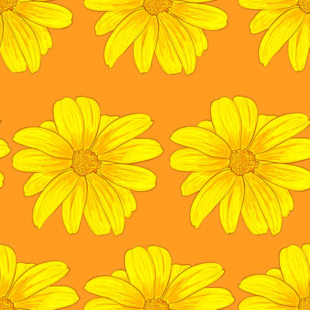 calendula flower: Seamless pattern background with yellow flowers. Vector illustration