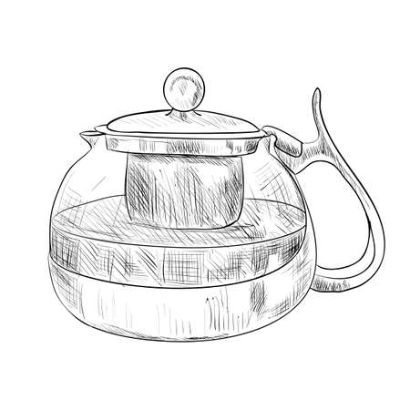 kitchen equipment: Vector sketch of glass teapot. Hand draw illustration.